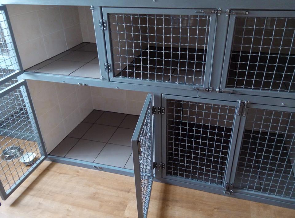 Гостиница для животных ветеринарная клиника ветмакс киев нивки